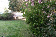 Apt 1 Garden to Road