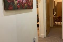 Apartment 9 Rental Corridor
