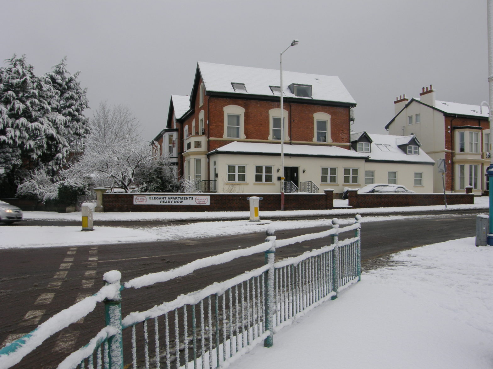 Snowy Shelbourne